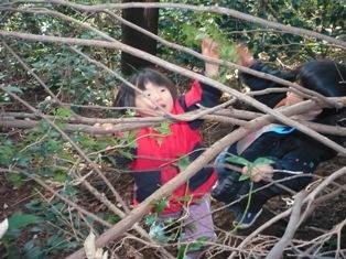 散策の森で、ひいらぎとり。3歳児のひばり組