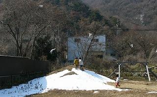 築山所々に真っ白な雪
