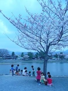 桜の木の下で、ほっこりお茶休憩!