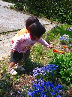 花を観てる園児