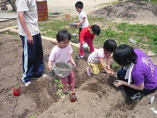 苗に水をかける園児